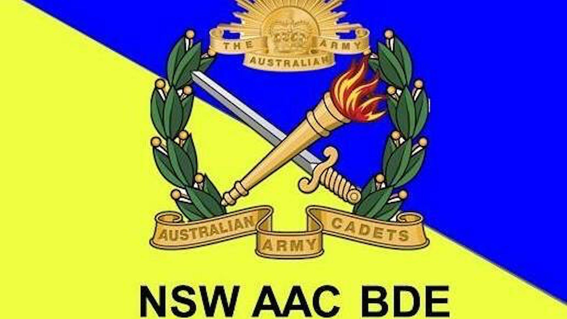 23 Bn AAC Badge