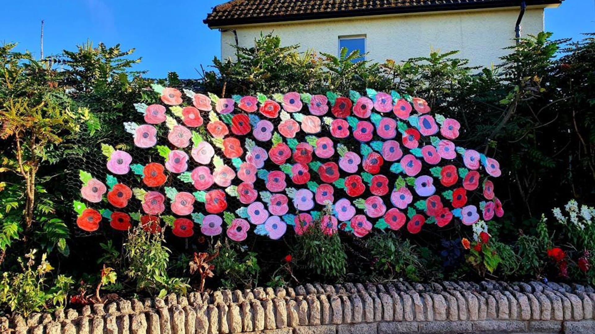 Ballygowan Poppy Display Nov 2020