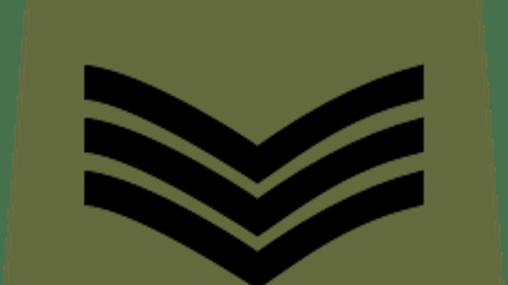 Cadet sgt 2x