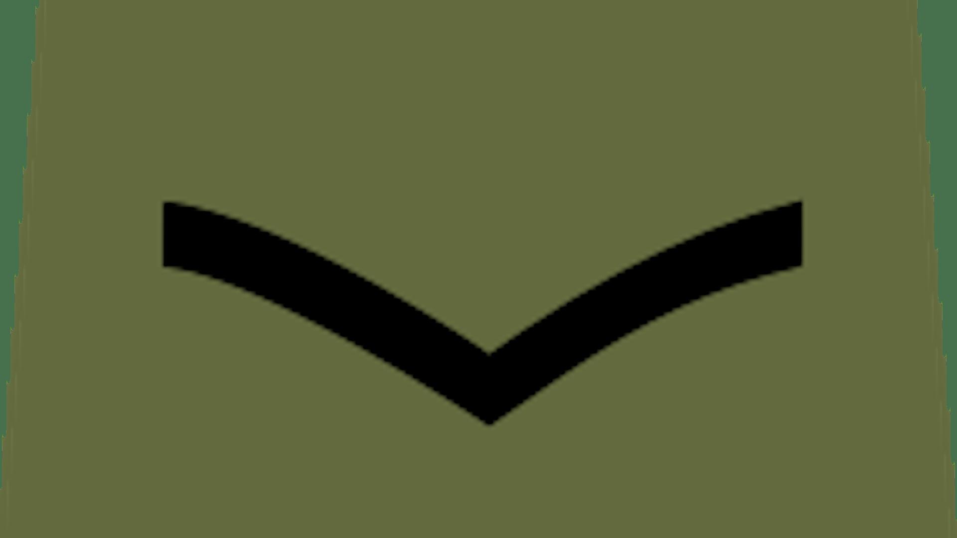 Cadet lcpl 2x