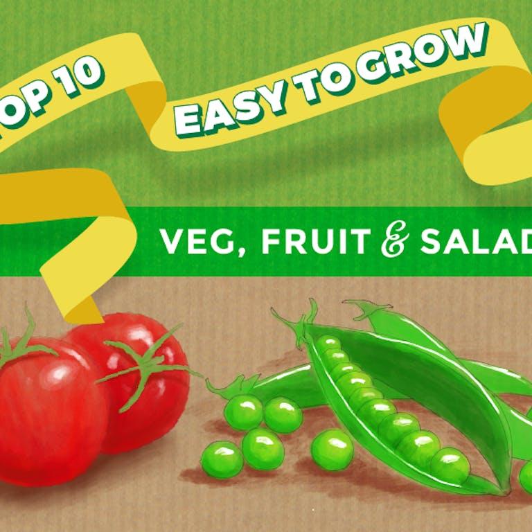 Thompson morgan 10 easy veg infographic header